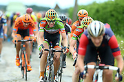 BELGIUM / BELGIE / BELGIQUE / CYCLING / WIELRENNEN / CYCLISME / UCI EUROPE TOUR / NAPOLEON GAMES CYCLING CUP / DWARS DOOR HET HAGELAND / FROM AARSCHOT TO DIEST / 197,7 KM / BEVEKOMSESTRAAT IN BIERBEEK (STROOK 1) / PEETERS YANNICK (CRELAN-VASTGOEDSERVICE)