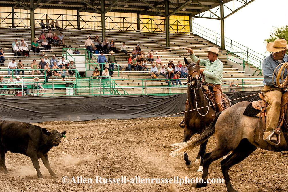 Buck Brannaman, Nate Wald, Big Loop, Will James Roundup, Ranch Rodeo, Hardin, Montana