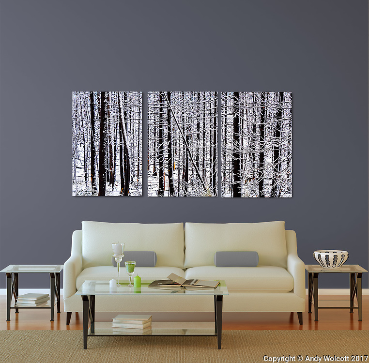 Room Displays<br /> <br /> templates by: www.arianafalerni.com