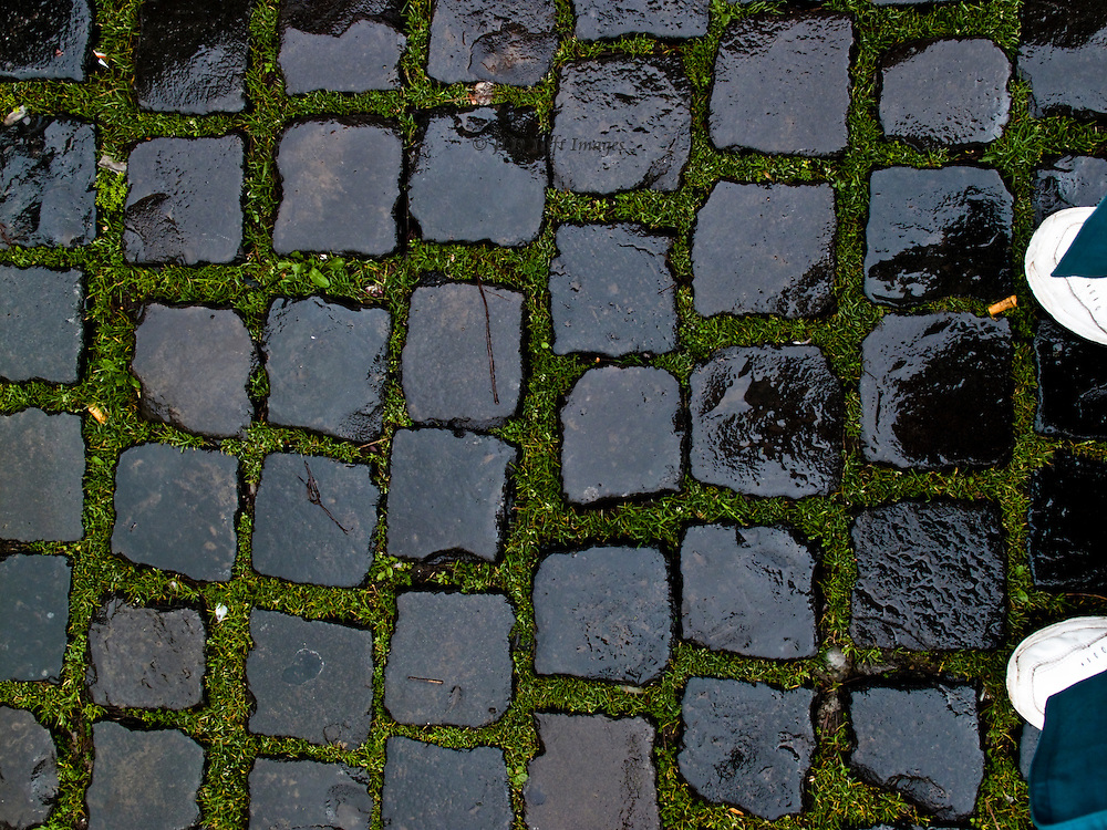 Wet shiny cobblestones, moss in between their rectangular shapes, near the Vatican.  Feet of the photographer in white sneakers.  Much walking despite the rainy weather that day.