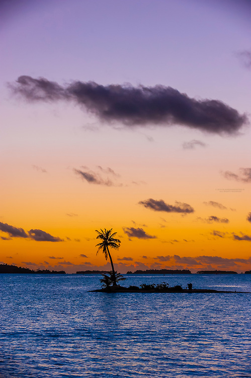A single palm tree on a small motu (island), Bora Bora, Society Islands, French Polynesia.