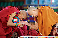 HHDL and Ganden Tri Rinpoche, Jetsun Lobsang Tenzin Some of the nuns after receiving their Geshe-ma degree at Drepung Lachi Monastery in Mundgod, Karnataka, India on December 22, 2016