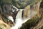 Lower Yellowstone Falls.  Yellowstone National Park, USA