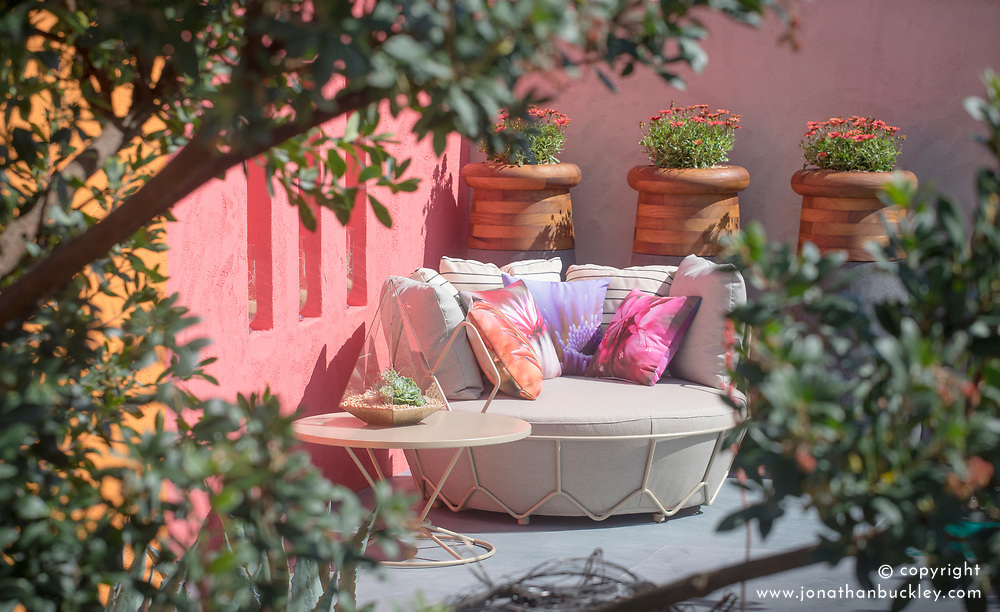 Beneath a Mexican Sky Garden, sofa with brightly painted walls and pots of osteospermum. Design: Manoj Malde, Built by: Living Landscapes, Sponsored by: Inland Homes PLC