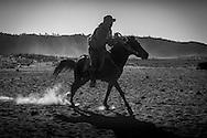 Horse rider in Mount Bromo (gunung Bromo)