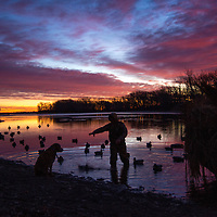 duck hunters and dog putting out duck decoys before hunting light