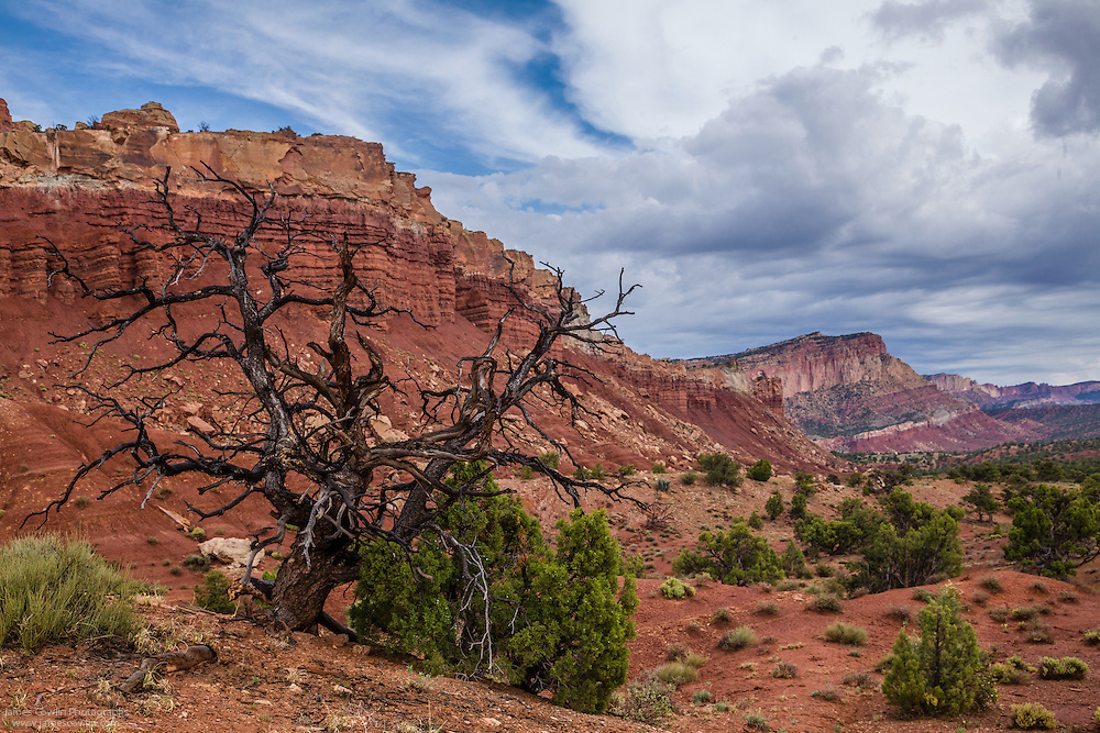 The cliffs of Waterpoket Fold in Capitol Reef National Park