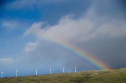 Rainbow and Wind Turbines, Maui, Hawaii, US