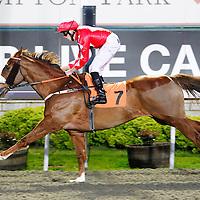 Nubar Boy and George Downing winning the 5.55 race