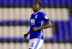 Wes Harding of Birmingham City - Mandatory by-line: Paul Roberts/JMP - 08/08/2017 - FOOTBALL - St Andrew's Stadium - Birmingham, England - Birmingham City v Crawley Town - Carabao Cup