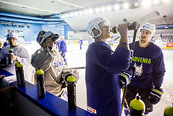 Jan Urbas of Slovenia and Miha Verlic of Slovenia during practice session of Team Slovenia at the 2017 IIHF Men's World Championship, on May 8, 2017 in Accorhotels Arena in Paris, France. Photo by Vid Ponikvar / Sportida