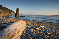 Seastack Ruby Beach Olympic National Park