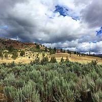 PJ Ranch