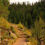 Steps winding around a corner of the Island Trail in Walnut Creek