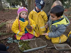 Tiny Trees Preschool, Jefferson Park, Seattle, Washington