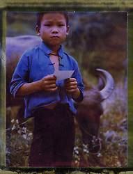 Polaroid 79's portrait of a young boy keeping an eye on the family's buffalo