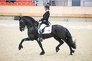 Esther Liano - Stal Liano's Thijs<br /> KNHS Indoorkampioenschappen 2017<br /> © DigiShots