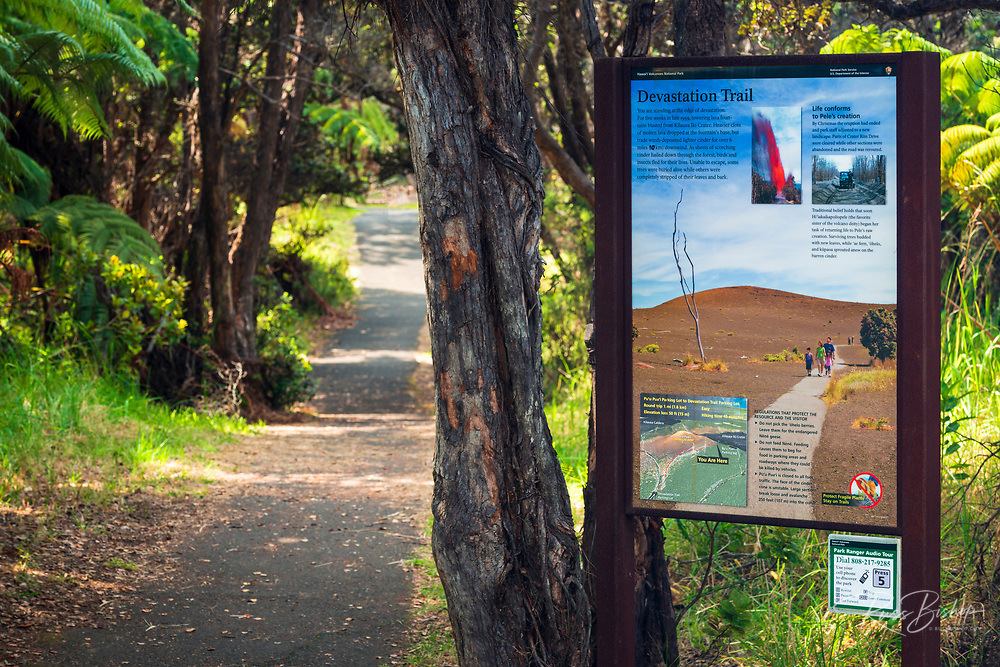 Interpretive sign on the Devastation Trail, Hawaii Volcanoes National Park, Hawaii USA