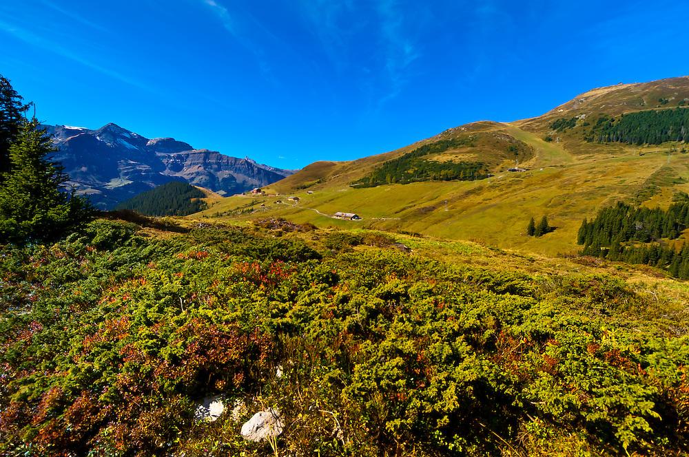 Hiking in the Swiss Alps from Eigergletscher down to Wengernalp, Kleine Scheidegg, Canton Bern, Switzerland