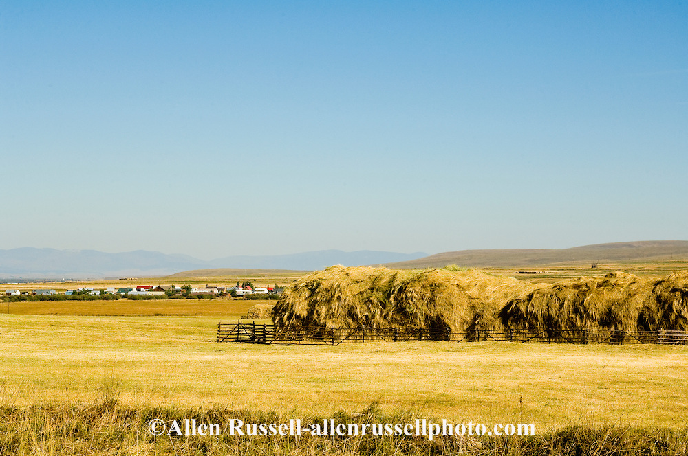 Haystack, Big Hole Valley, Land of 10,000 Haystacks, Jackson, Montana, made with Beaverslide