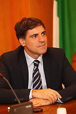 20131118 GIANNATTASIO MAURO