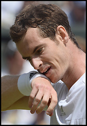 Image ©Licensed to i-Images Picture Agency. 02/07/2014. London, United Kingdom. Andy Murray losing the Men's  Quarter Finals on centre court  at  Wimbledon. Picture by Andrew Parsons / i-Images