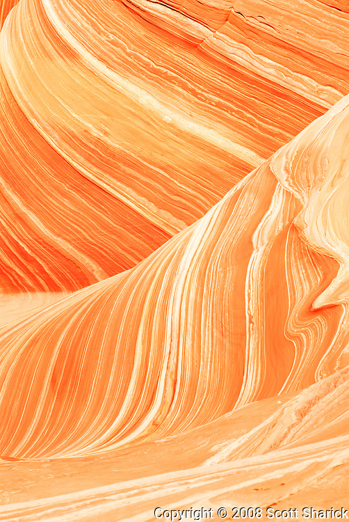 The Wave in the Coyote Buttes North region of Northern Arizona. Missoula Photographer