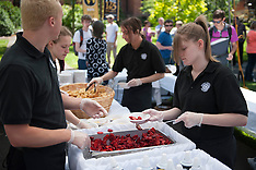 Berry Festival - Strawberries