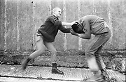 Felix and Lee fighting. UK. 1980s.