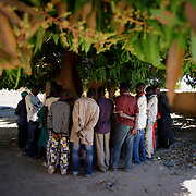 January 21, 2013 - Diabaly, Mali: Local people stand by a mango grove that islamic militants used as base in central Diabaly, a day after Mali government troops regain control of the city. Diabaly was under islamist militants control since the 14th of January...Several insurgent groups have been fighting a campaign against the Malian government for independence or greater autonomy for northern Mali, an area known as Azawad. The National Movement for the Liberation of Azawad (MNLA), an organisation fighting to make Azawad an independent homeland for the Tuareg people, had taken control of the region by April 2012...The Malian government pledge to the French army to help the national troops to stop the rebellion advance towards the capital Bamako. The french troops started aerial attacks on rebel positions in the centre of the country and deployed several hundred special forces men to counter attack the advance on the ground. (Paulo Nunes dos Santos/Polaris)