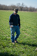 Brent Rendel, farmer in the Northeast area of Oklahoma near Miami Ok shares how he uses the Greenseeker technology and the new hand held scanner recently released to measure nutrient needs of his crops.  He demonstrates the device as used to measure nitrogen needs of his wheat field.  multiple measurements are used comparing a N-Rich Strip to the rest of the field and nitrogen is added at a rate to maximize growth potential and minimize over fertilization.