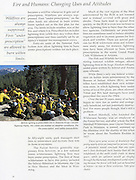California National Forests, Firefighters, Prescribed Fire, Sequoia National Park, wildland firefighters