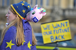 "© Licensed to London News Pictures. 30/01/2018. LONDON, UK.  A campaigner stands outside the Houses of Parliament to protest against Brexit carrying a toy unicorn bearing with the message ""We Were Conned"".  It has been reported that a leaked document entitled ""EU Exit Analysis - Cross Whitehall Briefing"", drawn up by the Department for Exiting the EU, concludes that Britain will be worse off under any Brexit scenario.   Photo credit: Stephen Chung/LNP"