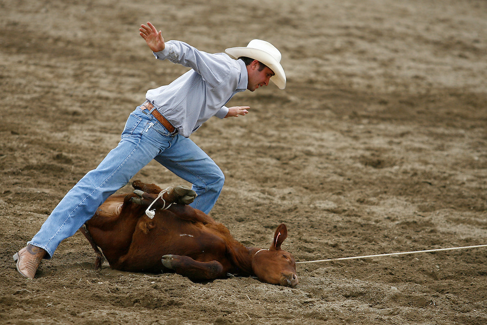 062010-Evergreen, COLORADO-sundayprca-Cody Gerard, of Eagle, CO, signals he has finished roping during the Tie Down Roping competition at the 2010 Evergreen Rodeo Sunday, June 20, 2010 at the El Pinal Arena..Photo By Matthew Jonas/Evergreen Newspapers/Photo Editor