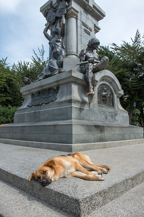 Sleeping Dog by Tierra del Fuego Monument,  Punta Arenas Chile