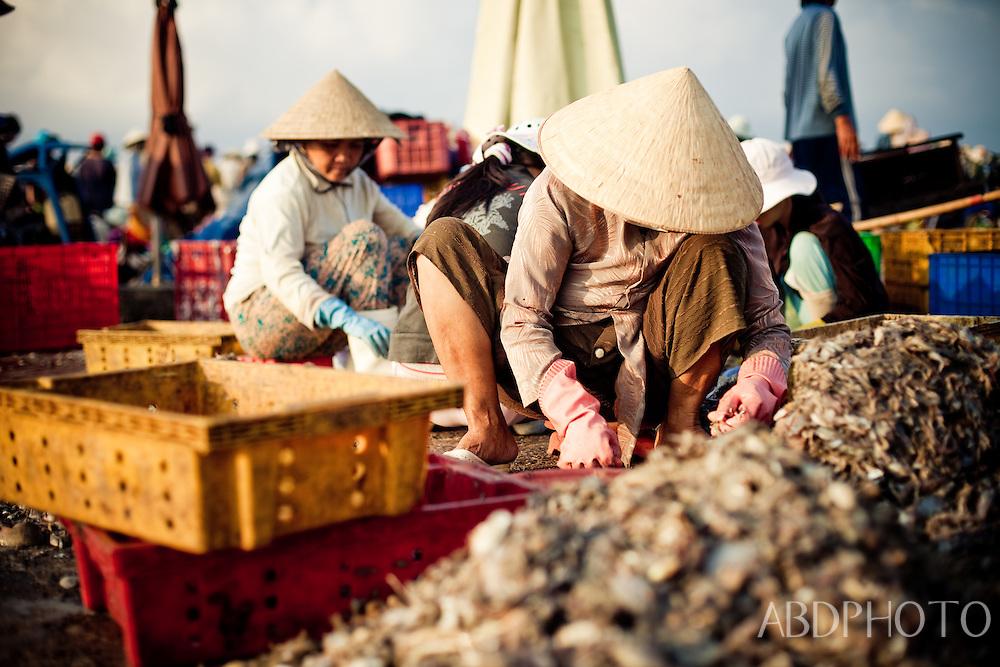 Phan Thiet Fish Market Vietnam
