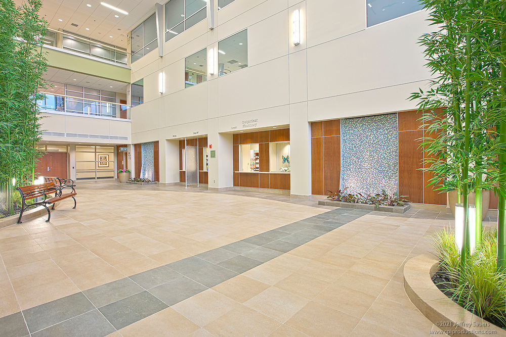 Architectural Interior image of water feature at Franklin Square Hospital Center Patient Care Tower in Baltimore, MD