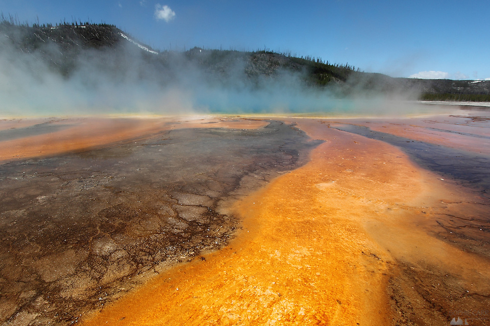Colourful run-off from Grand Prismatic Spring in the Midway Geyser Basin of Yellowstone National Park, Wyoming, USA