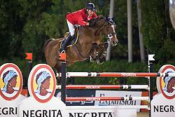 Moneta Luca Maria (ITA) - Neptune Brecourt<br /> Final competiton<br /> Furusiyya FEI Nations Cup™ Final - Barcelona 2014<br /> © Dirk Caremans<br /> 11/10/14