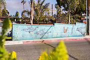 Wall Mural in a Residential Neighborhood of San Clemente California