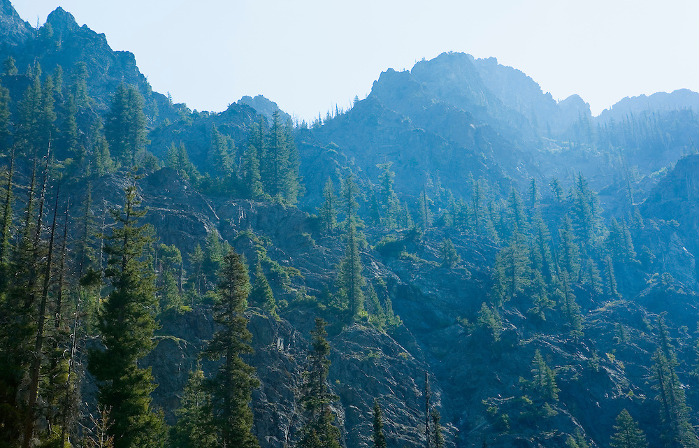 Steep forested slopes of Central Cascades Washington USA.