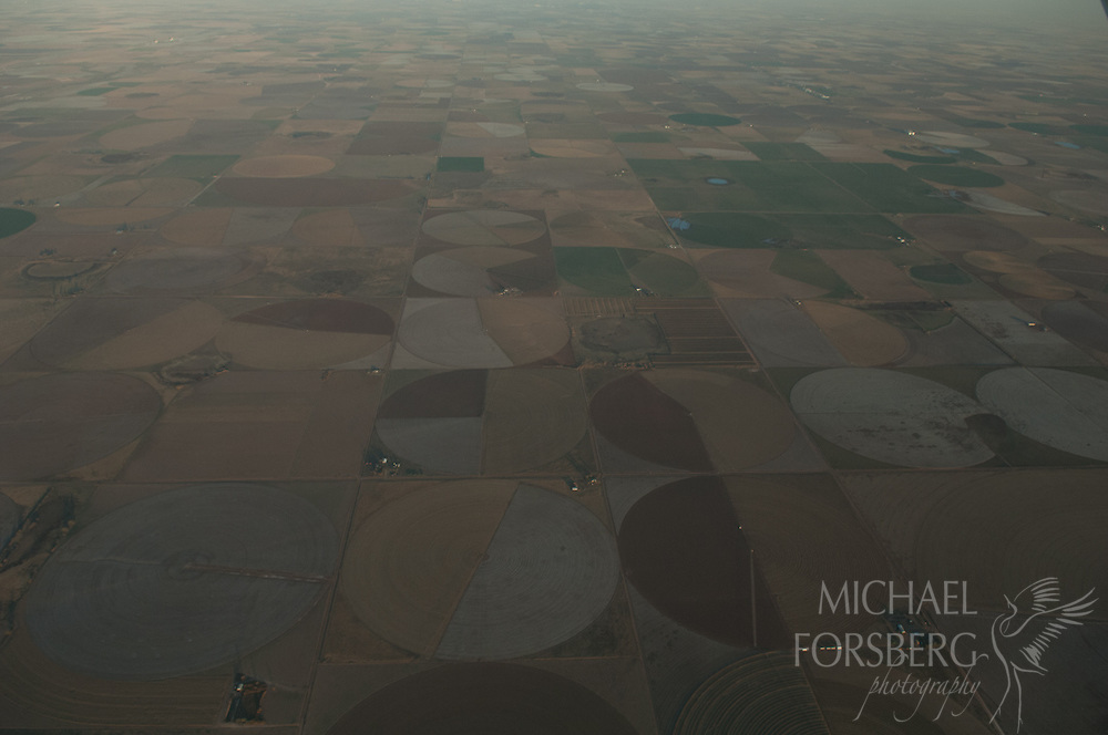 Llano Estacado region, panhandle Texas<br /> <br /> Aerial view of extensive irrigated cropfields, made possible by center pivot irrigation pulling water up from the Ogallala aquifer below. <br /> <br /> In many areas of the Llano, groundwater levels have dropped hundreds of feet since the beginning of irrigation in the 1950's.