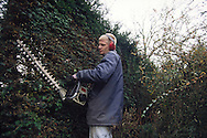 Council worker cutting a hedge with a power tool in a Municipal Park ....