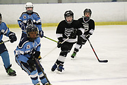 SAT 0945 LAKE ERIE PANTHERS 1 V SPRINGFIELD KINGS 1