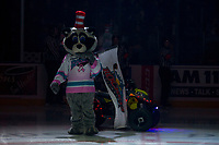 KELOWNA, CANADA - OCTOBER 28: Rocky Racoon, the mascot of the Kelowna Rockets stands on the ice at the beginning of the game dressed as the Cat in the Hat for Halloween against the Prince George Cougars on October 28, 2017 at Prospera Place in Kelowna, British Columbia, Canada.  (Photo by Marissa Baecker/Shoot the Breeze)  *** Local Caption ***