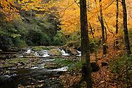 Creek at Dingmans Falls Area, Fall colors, Delaware Water Gap National Recreation Area, Pennsylvania, USA