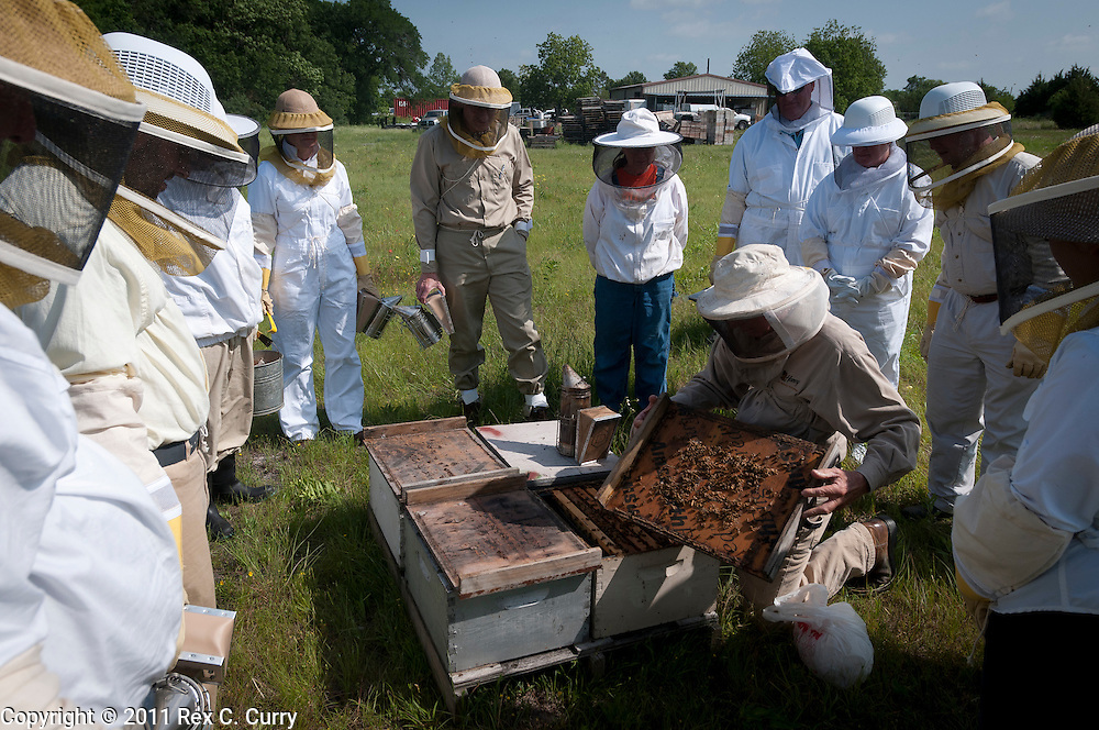 John Talbert shows students in his beekeeping class a frame of honey bees at his Sabine Creek Honey Farm in Royce City on May 7, 2011....