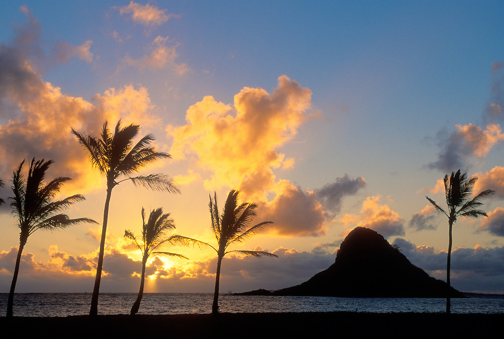 "Sunrise and Mokoli'i Island (""Chinaman's Hat""), with coconut palm trees; Kualoa County Beach Park, Windward Oahu, Hawaii."