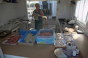 Fresh fish stall. Small fishing and sailing hamlet of Felixstowe Ferry at the mouth of the River Deben, Suffolk, England