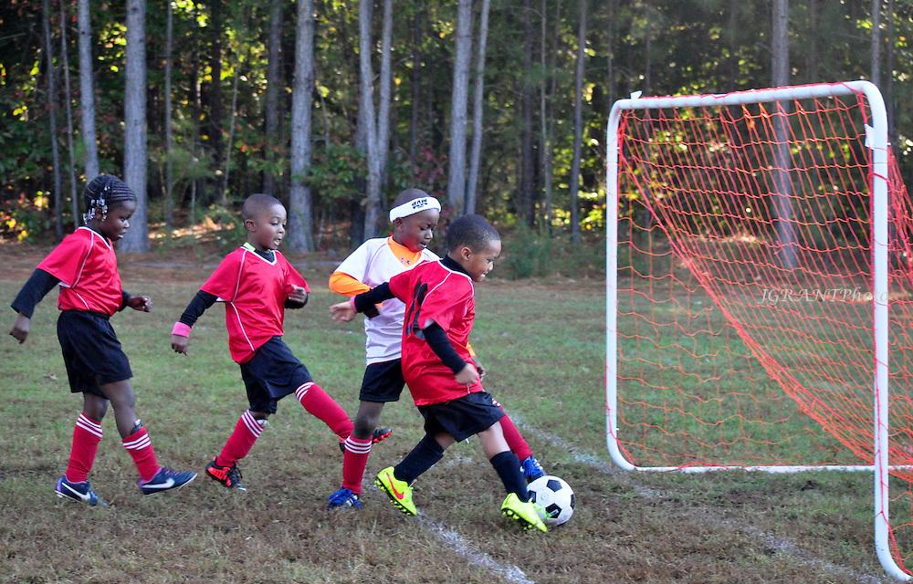 Tiger Soccer Club Fall 2014.  U6Guardians Game Gallery